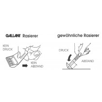 Gallant Rasierer